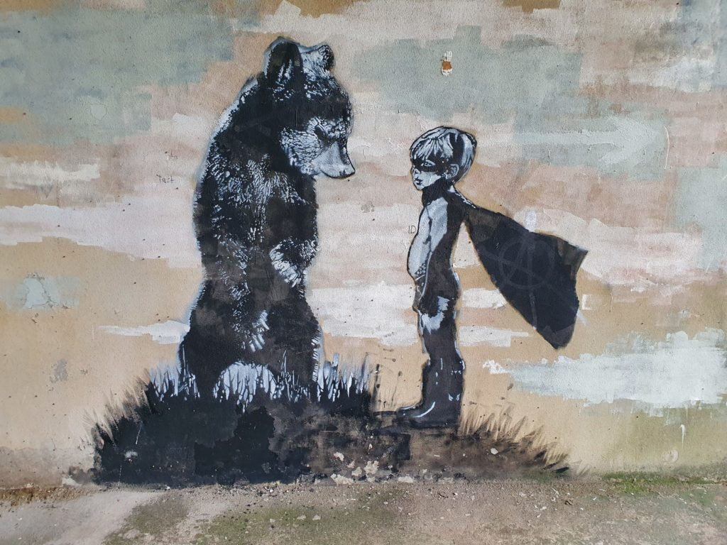 Face the bear
